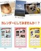 オリジナルカレンダー【写真プリント】2014年 写真カレンダー 布製